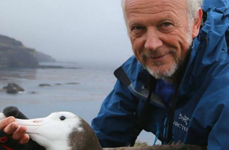 In the Antarctic, a scientist recruits albatrosses to pinpoint illegal fishing boats