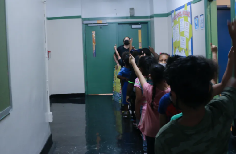 I am an elementary school educator, and I embrace critical race theory